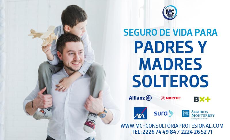 Quién necesita un seguro de vida expertos en seguros m&c consultores financieros tipos profesionales seguro para padres solteros mexico cdmx puebla monterrey