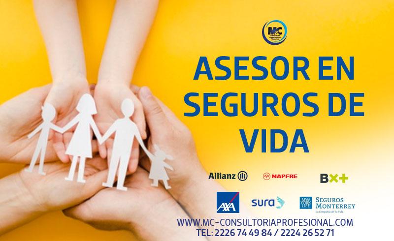 asesoria profesional que es un seguro de vida asesores mexico cdmx puebla monterrey m&c consultores profesionales