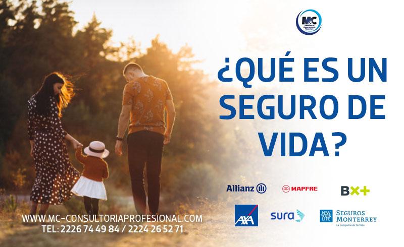 que es un seguro de vida asesores mexico cdmx puebla monterrey m&c consultores profesionales